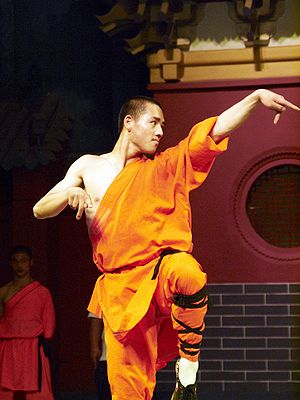 A shaolin student doing a kung fu moves. Shaol...